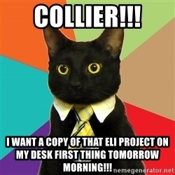 Business Cat - Collier!!! i want a copy of that eli project on my desk first thing tomorrow morning!!!