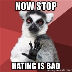 Chill Out Lemur - Now STop Hating is bad