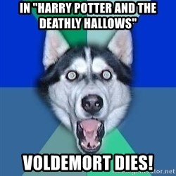 Spoiler Dog - In ''harry potter and the deathly hallows'' voldemort dies!