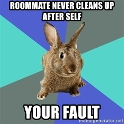 Roommate Rabbit - roommate never cleans up after self your fault