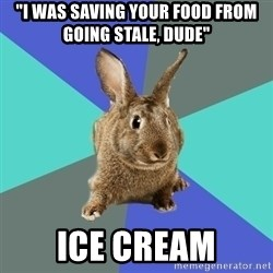 """Roommate Rabbit - """"i was saving your food from going stale, dude"""" ice cream"""