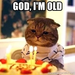 Birthday Cat - god, i'm old