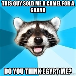 Lame Pun Coon - This guy sold me a camel for a grand do you think egypt me?