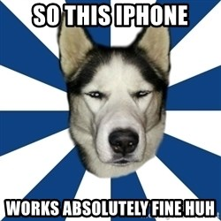 Skeptical Husky - So this iphone works absolutely fine huh