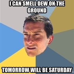 Bear Grylls - I can smell dew on the ground tomorrow will be saturday
