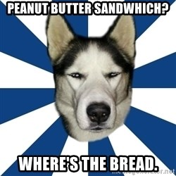 Skeptical Husky - Peanut Butter Sandwhich? Where's the bread.