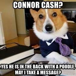 Dog Lawyer - Connor cash? yes he is in the back with a poodle, may i take a message?