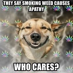 Stoner Dog - they say smoking weed causes apathy who cares?
