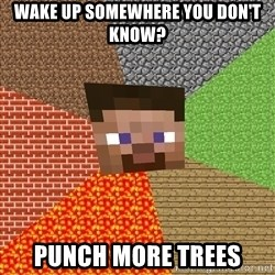 Minecraft Guy - Wake up somewhere you don't know? punch more trees
