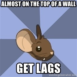 Transformice meme mouse - almost on the top of a wall get lags