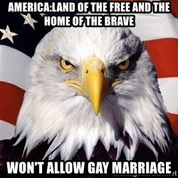 American Pride Eagle - America:land of the free and the home of the brave Won't allow gay marriage