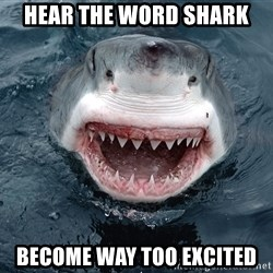 Insanity Shark - Hear the word Shark Become way too excited
