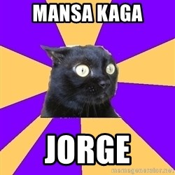 Anxiety Cat - MANSA KAGA JORGE
