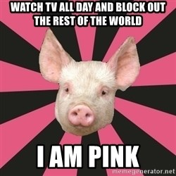 Pink Floyd Fan Pig - WATCH TV ALL DAY AND BLOCK OUT THE REST OF THE WORLD I AM PINK