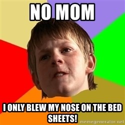 AngrySchoolboy - no mom i only blew my nose on the bed sheets!