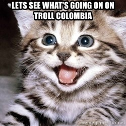 HAPPY KITTEN - lets see what's going on on troll colombia