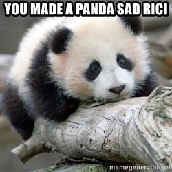 sad panda - you made a panda sad rici
