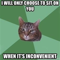 fyeahassholecat - i will only choose to sit on you when it's inconvenient