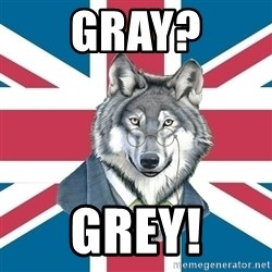 Sir Courage Wolf Esquire - gray? grey!