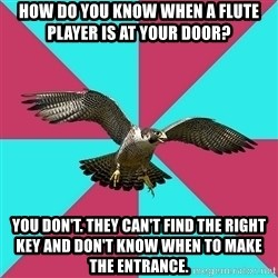 Flute falcon - How do you know when a flute player is at your door? You don't. THey can't find the right key and don't know when to make the entrance.