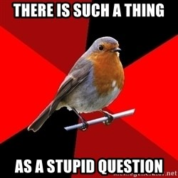 Retail Robin - There is such a thing as a stupid question