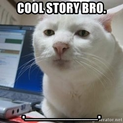 Serious Cat - cool story bro. ._________.