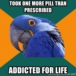 Paranoid Parrot - Took one more pill than prescribed addicted for life