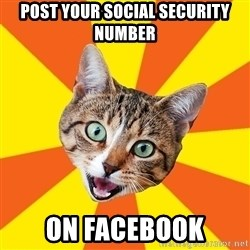 Bad Advice Cat - post your social security number on Facebook