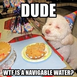 Stoned Birthday Dog - DUDE WTF IS a navigable water?