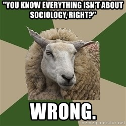 """Sociology Student Sheep - """"You know everything isn't about sociology, right?"""" wrong."""
