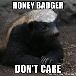 Honey Badger - Honey badger don't care