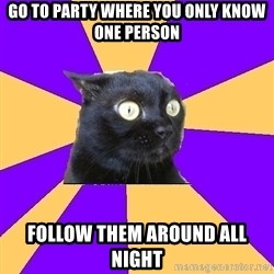 Anxiety Cat - go to party where you only know one person Follow them around all night