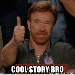 Chuck Norris Approves - cool story bro
