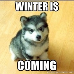 Baby Courage Wolf - winter is coming