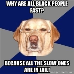 Racist Dawg - why are all black people fast? because all the slow ones are in jail!