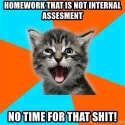 Ib Kitten - homework that is not internal assesment No time for that shit!
