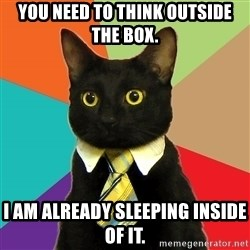Business Cat - you need to think outside the box. I am already sleeping inside of it.