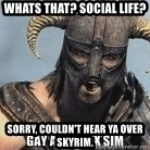Skyrim Meme Generator - whats that? Social life? sorry, couldn't hear ya over skyrim.