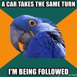 Paranoid Parrot - A car takes the same turn I'm being followed