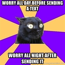 Anxiety Cat - Worry all day before sending a text worry all night after sending it