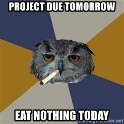 Art Student Owl - Project due tomorrow eat nothing today