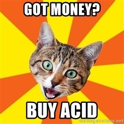 Bad Advice Cat - Got money? Buy Acid
