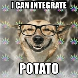 Stoner Nerd - i can integrate potato