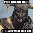Skyrim Meme Generator - Pick khajiit race still ask what they are