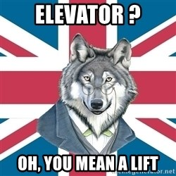 Sir Courage Wolf Esquire - elevator ? oh, you mean a lift