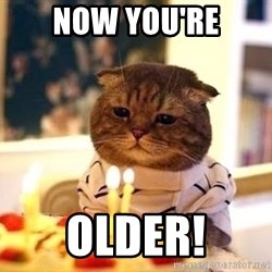 Birthday Cat - NOW YOU'RE OLDER!