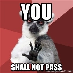 Chill Out Lemur - you shall not pass