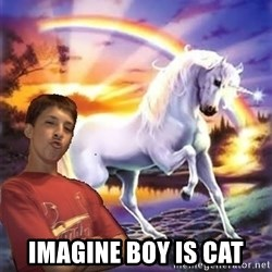 Chris' Unicorn - imagine boy is cat