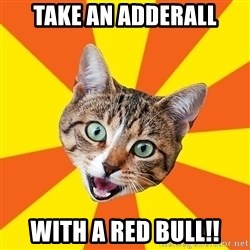 Bad Advice Cat - Take an adderall With a red bull!!