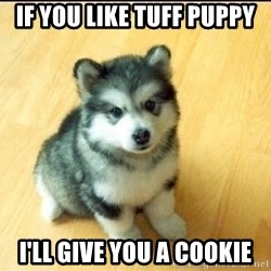 Baby Courage Wolf - If you like tuff Puppy I'll give you a cookie